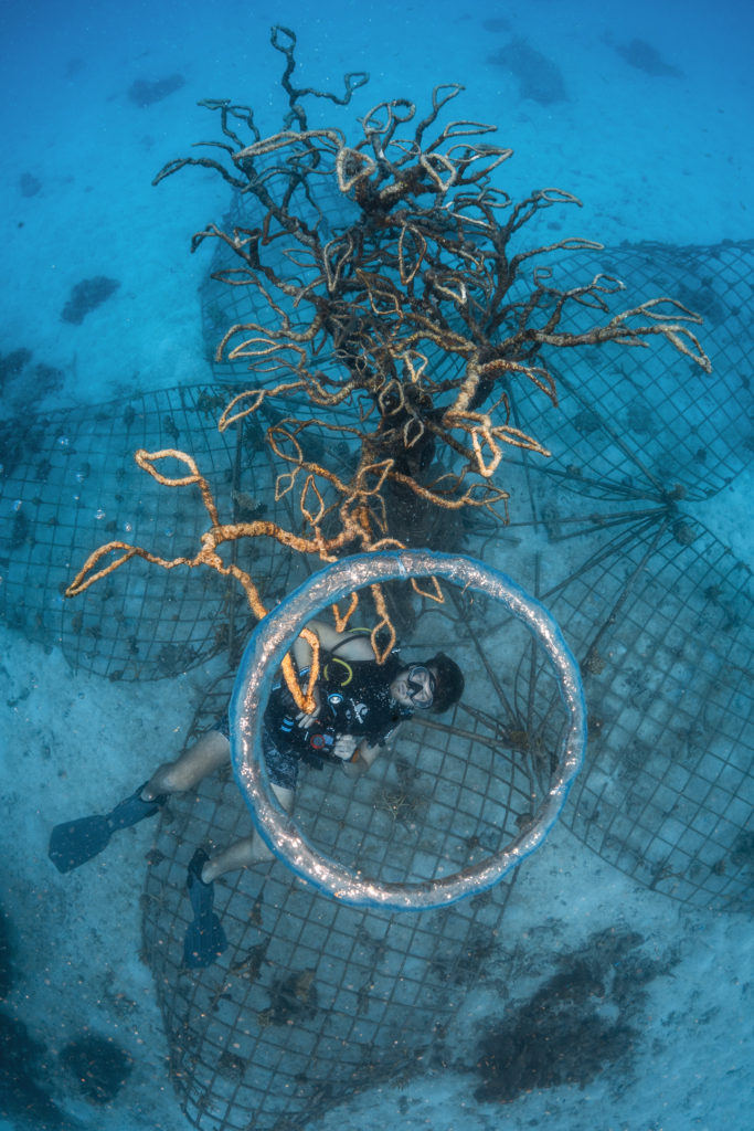 Conservation Divers Master Trainer Spencer Arnold and one of his innovative reef sculptures, to help rejuvenate coral reefs